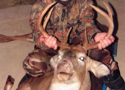 Ten-year-old gets deer