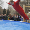 MacGregor takes polar plunge in red flannels