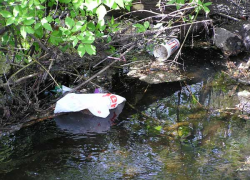 City to celebrate Earth Day by cleaning up creek