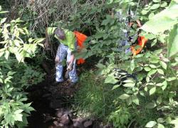Help clean up Cedar Creek this Saturday