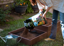 Cool new concepts for gardening
