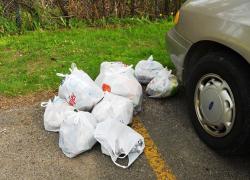 Boys clean up trash