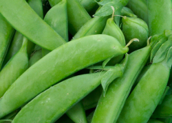Fresh Market – Sugar snap peas