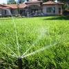 How to save money on lawn care