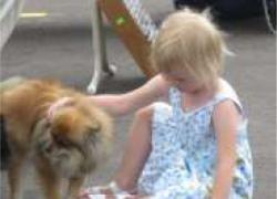 Solon Market Dog Days of Summer