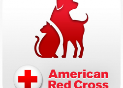 American Red Cross issues new Pet First Aid App