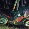 Man crashes into tree