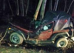 Man crashes into tree