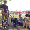 Fire at pet kennel