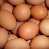 Fresh Market—Farm Fresh Eggs