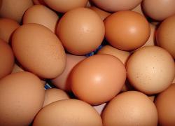 Fresh Market—Farm Fresh Eggs