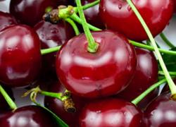 Fresh Market: Cherries