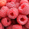 Fresh  Market: Raspberry—Food for the gods