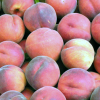 Fresh Market: The Peach