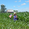 Knee high by the Fourth of July?