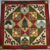 Friends of the Cedar Springs Library Quilt Raffle