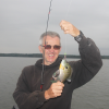 Fall flutter for giant panfish