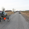 Crash claims life of horse and buggy driver