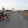 Horse and buggy driver injured in crash