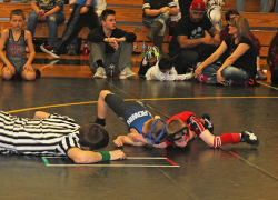 Youth wrestlers rack up 20 pins