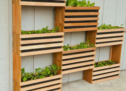 Creative ways to take your raised bed and planter gardening to new heights