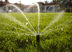 A Guide to saving water and your lawn