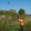 Fourth annual ladies' guided pheasant hunt