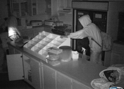 Thieves break into Skinner Field concession stand