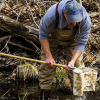 """What's """"bugging"""" you in our streams?: Volunteers needed for insect monitoring"""