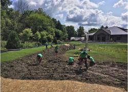 Wetlandrestoration construction underway
