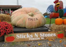 Pierson man grows largest pumpkin in state