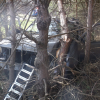 Howard City man dies in crash