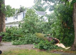 Weekend storms classified as derechos