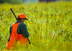 Safety is key to every successful hunt