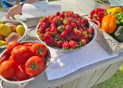Businesses benefit from farmers market and novelty food event