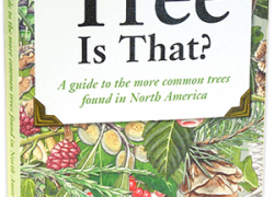 Tree identificationbook from the Arbor Day Foundation