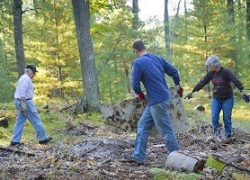 Join the #100in100 forest cleanup challenge