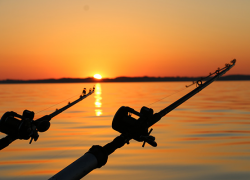 Court filing could end Great Lakes fishing as we know it