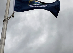 New state flag at the library