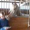 Reading club kids read to horses
