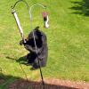 Help keep Michigan black bears at a distance