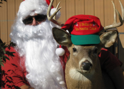 Christmas in July at Solon Farm Market