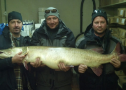 Angler catches 58-pound Great Lakes muskellunge