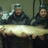 Great Lakes muskellunge now a world record