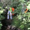 Cedar Creek cleanup this weekend
