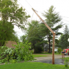 Storm brings down tree, powerline