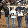Man and horses win world championship titles