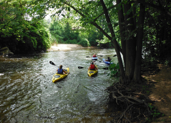Registration for Rogue River Expedition Closes on May 31