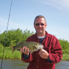 Casting spinner rigs for walleye and bass