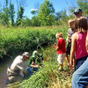 Tagged brook trout released in Cedar Creek